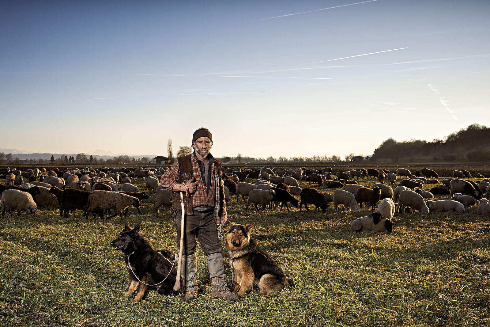 Landwirt_Rudy_Canonica_0729_crop.jpg